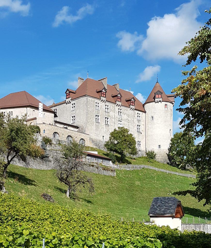 Le château et ses vignes